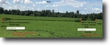 Ontario Farm Land 3 Acres Spectacular waterfront lots!