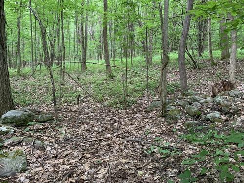 land hunt new lebanon ny hand hollow rd property