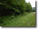 Tennessee Land 5 Acres 5.30Ac Totally Wooded Level To Gentle Roll