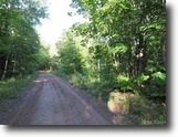 Wooded Recreational 160 Acres 1123355