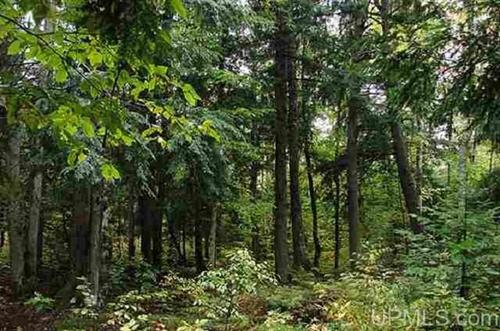 wooded recreational land property greenland michigan