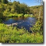 Wisconsin Land 10 Acres Minong, WI