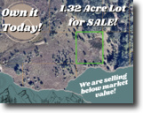 1.32-acre Lot in Davenport, Florida!
