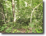 Tennessee Land 1 Acres Lot 14 On Austin Lake Rd Baxter Tn