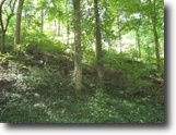 Tennessee Land 1 Acres Lot 14,15 & 16 On Austin Lake Rd Baxter TN