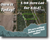 1.48-acre Gem in Lake Wales!