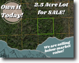 2 and a Half Acres in Volusia County, FL!