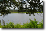 Florida Ranch Land 524 Acres St Clair Lake Ranch