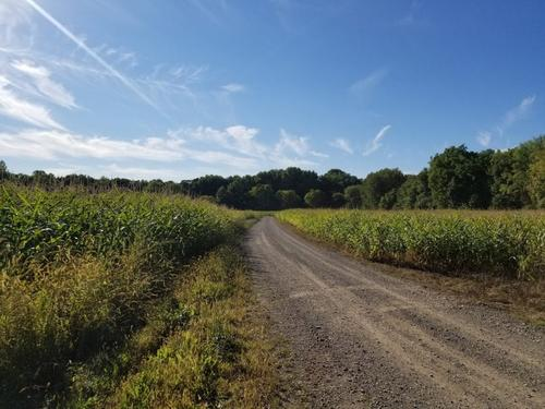 acreage farmland in clyde ny river road property