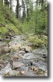 Colorado Hunting Land 40 Acres Colorado Creek 40ac Gold & Gem MiningClaim