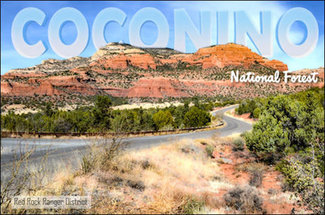 Located in the Coconino National Forest