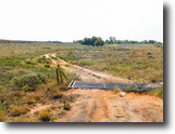 11/10 Absolute Auction 249± Acres