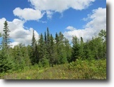 Michigan Land 160 Acres Quality Deer Hunting - 160A 1123881