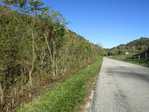 moss arcot road property celina tennessee