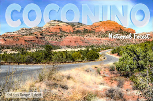 located in the coconino national forest arizona