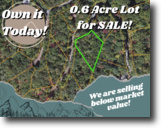 0.6-acre in Lake Lure!