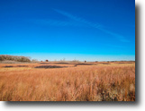 12/18 Auction 160± Acres Grassland