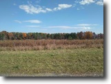 New York Hunting Land 10 Acres 10 ac Borders Treman State Park Ithaca NY