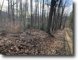 55 acres Hunting in Hinsdale NY Cooper Rd