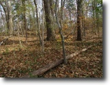 Tennessee Land 1 Acres Lot 10 / 0.68 Ac In River Oaks Estates