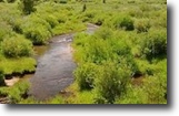 Colorado Hunting Land 40 Acres Finance Colorado 40 ac MiningClaim w/Creek