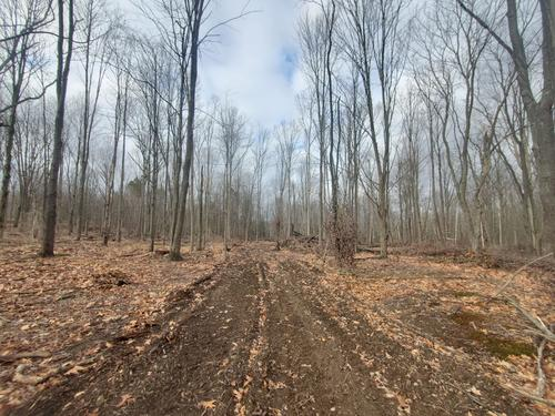 land cabin in thurston ny mcintosh rd property
