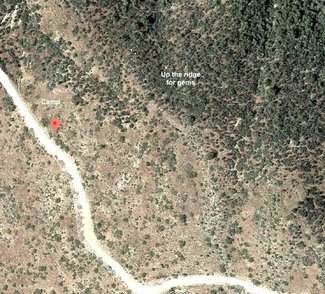 Satellite view camping spot with trees