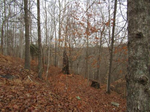 land story home in country property hilham tennessee