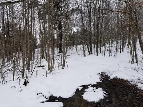 land hunting richford ny hubby rd property