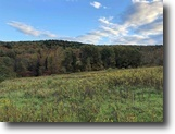 New York Land 96 Acres 95 ac Timber Harpursville NY 224 Bates Rd
