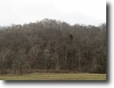 Tennessee Land 83 Acres 82.90 Ac W/ Gushing Creek, Views, Woods