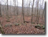 Tennessee Hunting Land 222 Acres 222+Ac W/ Building Sites,Views,Caves,Bluff
