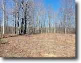 Tennessee Land 22 Acres 22+Ac Totaly Wooded, Mtn Views, No Restric