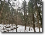 New York Hunting Land 20 Acres Southern Tier Sportsman's Dream