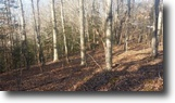 Tennessee Land 4 Acres 3.50ac W/Creek, Wildlife & Close To Lake