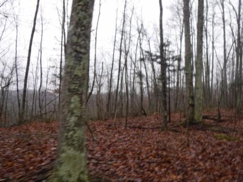 house & acreage wooded private secluded hunting land property clay county tennessee