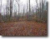 Tennessee Land 106 Acres 106Ac,Wooded,Private,Secluded,Hunting Land