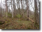 Tennessee Land 62 Acres 62Ac,Wooded,Private,Secluded,Hunting Land