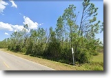 Florida Land 3 Acres Vacant Property For Sale by Owner