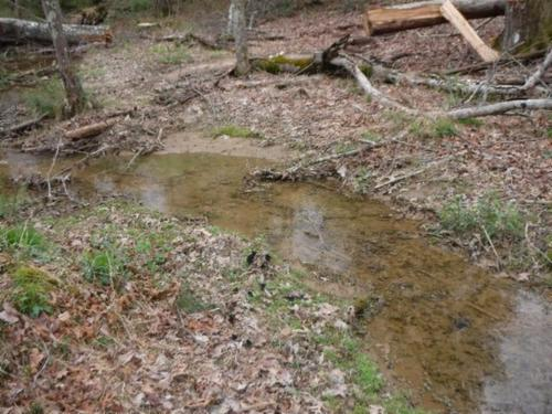land right off of for development property rockwood tennessee
