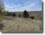 13 acres Hunting Humphrey NY Chapman Road