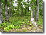 Tennessee Land 7 Acres 7.05 Ac In Prestigious Mtn Harbor Estates