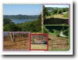 Tennessee Land 1 Acres 1+ac Center Hill Lake View in Harbor Point