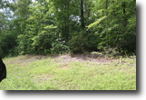 Tennessee Land 3 Acres Scenic View at Watts Bar Lake