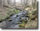 New York Hunting Land 124 Acres 124 ac Hunt East Branch NY Carcass Brook