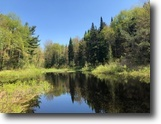 New York Hunting Land 25 Acres On First Creek Pond