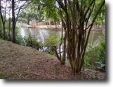 Florida Farm Land 5 Square Feet Tropical Waterfront Lot-To Gulf of Mexico!