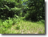 Kentucky Farm Land 6 Acres 5.84 AC w/ Potential Views Of Dale Hollow