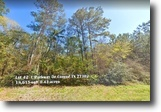Lake Front Property in Conroe Texas