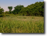 8/17 Auction 156.97± Acres Timber, Pond